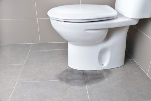 Most Common Causes of a Leaking or Running Toilet